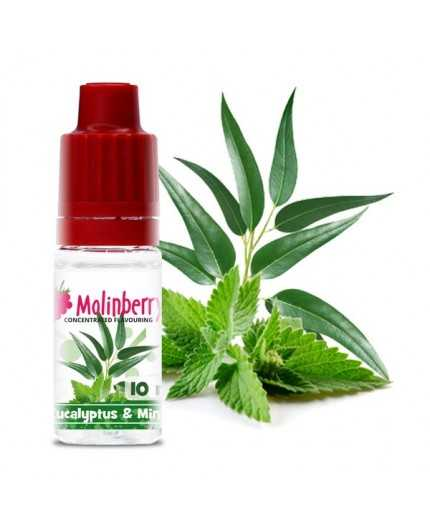 Molinberry Eucalyptus Mint